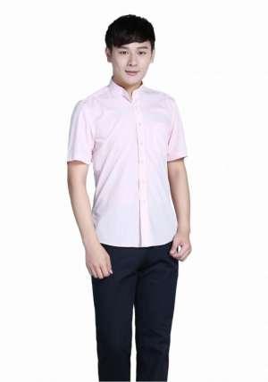 粉色立领商务短袖衬衫